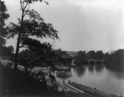1902 Lake in Delaware Park, Buffalo, N.Y. photo Vintage Black & White Photogr a3