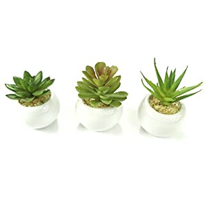 All In One Mini Artificial Faux Succulents White Ceramic Planter Pots Home Office Table Decoration Grift 97