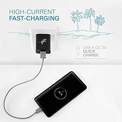 Nimble USB Wall Charger, Fast Charge QC 3.0 USB Wall Charger Compatible with Apple iPhone, Samsung, and USB Enabled Devices (BPA, PVC Free)