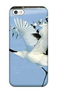 4685062K71669959 Faddish Bird Case Cover Case For Ipod Touch 5 Cover