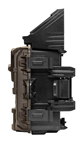 Buy trail camera on the market