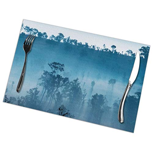 Hongclever Placemat, Washable Place Mats, Scenery Non-Slip Heat Resistant Tablemats Set of 6 for Dining Table