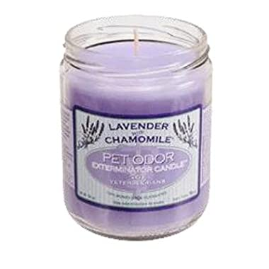 Pet Odor Exterminator Jar Candle - Lavender with Chamomile