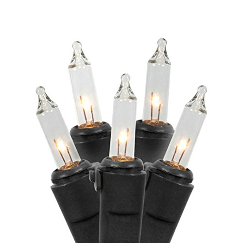 Vickerman Set of 100 Clear Mini Christmas Lights - Black Wire by Vickerman