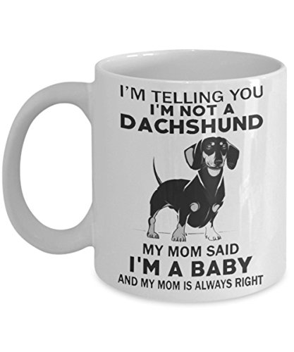 I'm telling you i'm not a dachshund my mom said i'm a baby and my mom is always right
