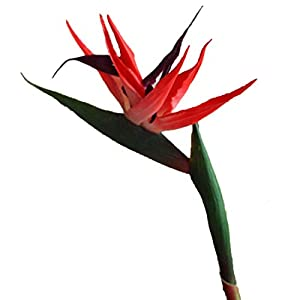 "Maylife 10 Stems 22.44"" Real Touch Bird of Paradise Artificial Flowers Bouquet for Home Garden Decoration/Wedding Party Decor (Red)"