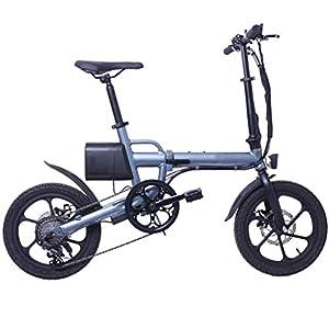 41X9NFTycML. SS300 16in pieghevole E-Bike lega di alluminio ultraleggera Scooter portatile con rimovibile Grande capacità agli ioni di litio (36V 8AH), Freni a disco doppio bicicletta elettrica per il Commuter,Grigio