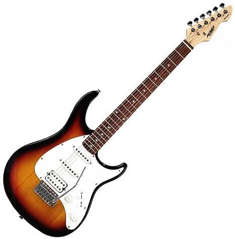 Nuevo estilo Stratocaster Guitarra eléctrica w/de madera de Peavey Raptor Plus Trémolo: Amazon.es: Instrumentos musicales