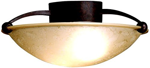 Kichler Soft Contemporary/Casual Lifestyle Semi Flush 2 Ligh