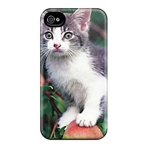 Fashion Protective A Kitten Up In A Tree Case Cover For Iphone 4/4s