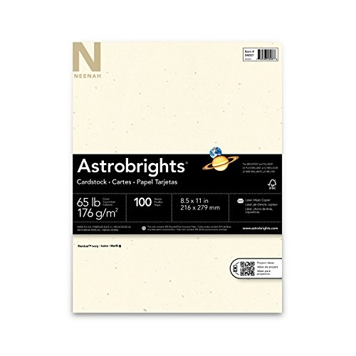 Neenah Stardust Specialty Cardstock, 8.5 X 11 Inches, Ivory, 100 Count (54007)