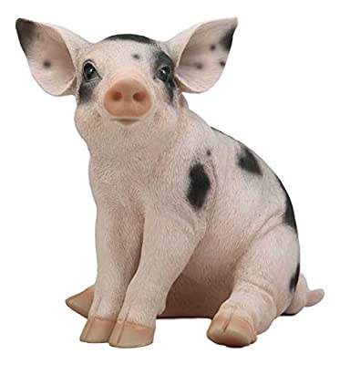 """Ebros Large Adorable Realistic Animal Farm Babe Spotted Pig Statue 9.5"""" Long Rustic Country Piggy Piglet Pet Pigs Collectible Figurine Great Gift for Farmers and Hunters"""