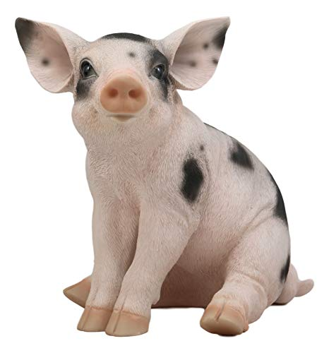 Realistic Animal Farm Babe Spotted Pig Statue 9.5