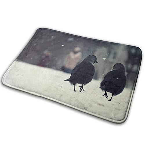 Kui Ju Non-Slip Doormat Entrance Rug Fade Resistant Floor Mats Birds Shoes Scraper 23.6x15.7x0.39Inch