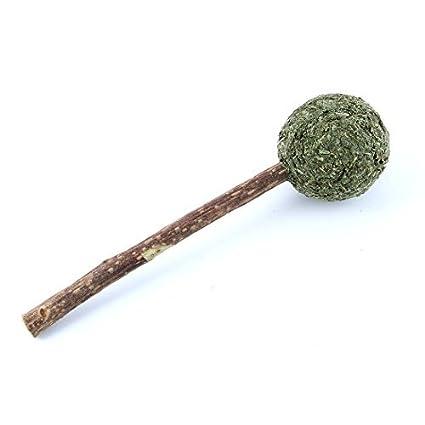 eDealMax KOTA PET autorizado dientes naturales Fresca hierba gatera comprimido limpieza de Bolas Juguetes Para Gatos