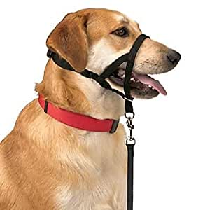 Halti Training Head Collar Large