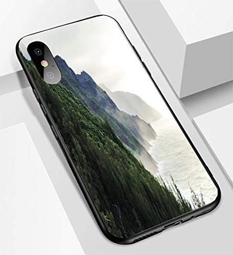 (iPhone X/XS Ultra-Thin Glass Back Phone case,Kalalau Trail at Kauai Hawaii in Foggy Day Soft and Easy to Protect The Protective case)