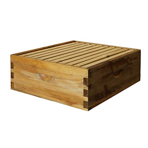 Hoover Hives Langstroth Bee 10 Frame Medium Box w/Frames and Foundations ... (Super Honey)
