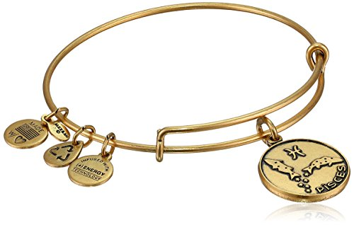Alex and Ani Pisces II Expandable Rafaelian Gold-Tone Wire Bangle Bracelet, 7.25