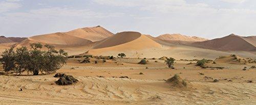 (Posterazzi PPI165028L Sand Dunes Sossusvlei Desert Namib-Naukluft National Park Hardap Namibia Poster Print, 36 x 12)