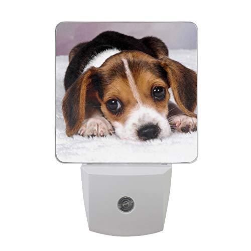 Beautiful White Climb Beagle LED Night Light Dusk to Dawn Sensor Night Home Decor Desk Lamp