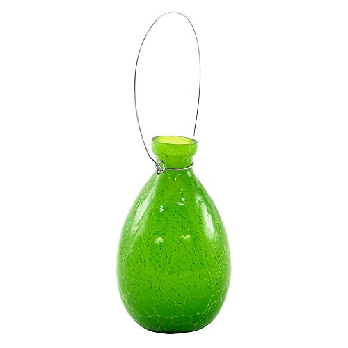 Achla Designs SV-01FG Hanging Glass Flower Planter/Rooting Vase Teardrop Shaped, Fern Green