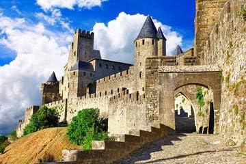 Disney medieval cambio de Francia Carcassonne -, la mayoría de forteress mayor (69199631), lona, 90 x 60 cm: Amazon.es: Hogar