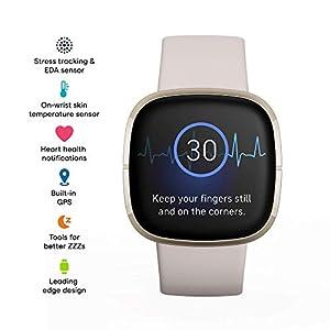 Fitbit Sense price in united states 2021