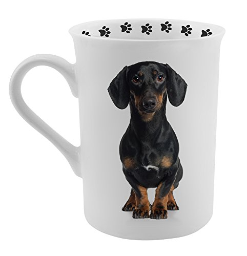 Dimension 9 Dachshund Coffee Mug, White ()