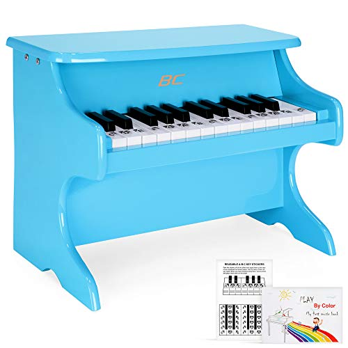 Best Choice Products Toddler Learn-to-Play Mini Piano w/ Key Note Stickers, Music Book, Blue