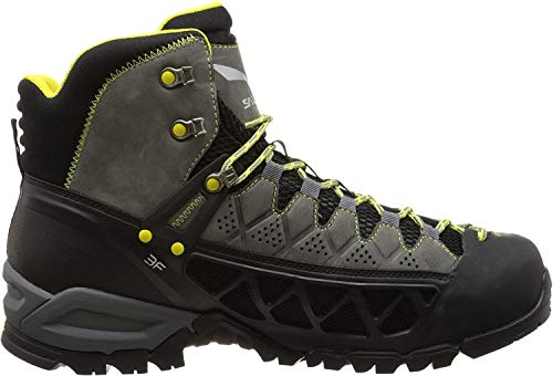 Salewa Men's Alp Flow