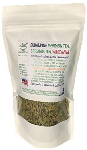 Mormon Tea Brigham SUBALPINE WILDCRAFTED product image