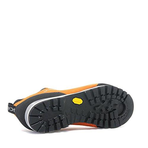 Ss18 Scarpa Tech Chaussure Papaya Zodiac Hiking Approach Uqx6xXwT70