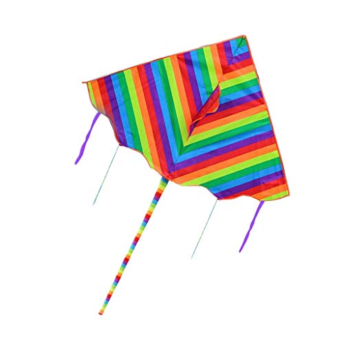 B&MF Colorful Kites, Outdoor Long Tail Park Kites Three-Dimensional Child Breeze Easy to Fly Flying Toy, 160 300cm