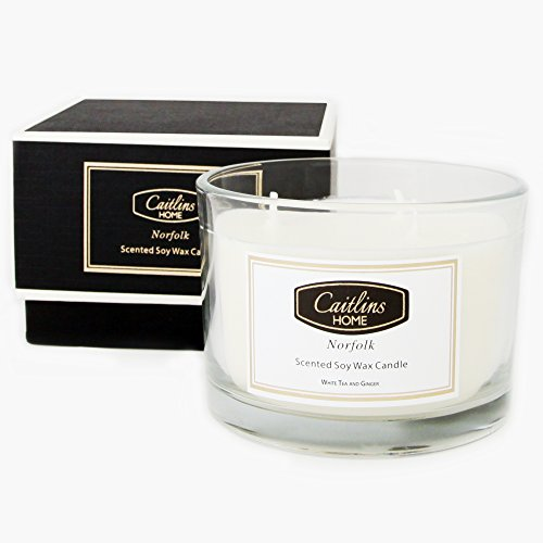 Scented Candle Soy Wax White Tea and Ginger Home Fragrance Gift 3 Wick Caitlins (Blended Family Candle)