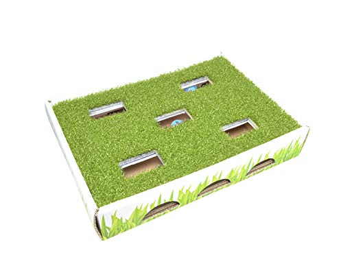Grass Patch Hunting and Play Box Cat Ball Toy by Petstages