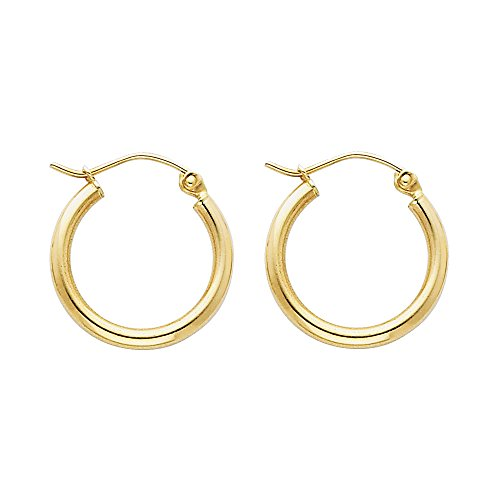 14k Yellow Gold 2mm Thickness Hinged Hoop Earrings (17 x 17 mm) ()