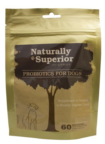 Probiotics For Dogs Support Healthy Digestion In Canines With All Natural Digestive Enzymes And Probiotic Supplements. Made In The USA, Chewable And Easier To Use Than Probiotic Powders Or Liquids. Support Gastrointestinal And Immunological Health., My Pet Supplies
