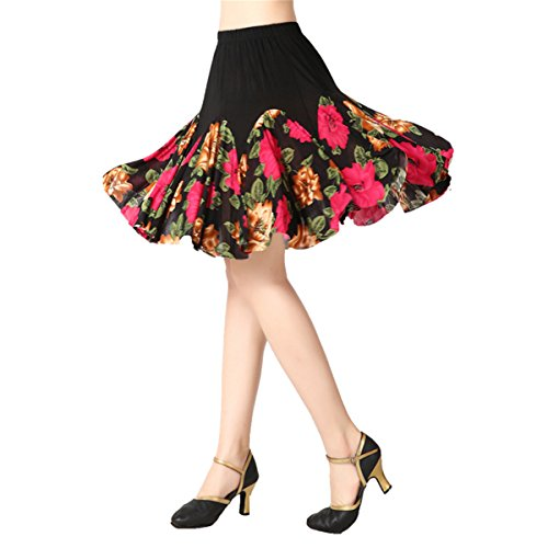 YoYoiei Women Latin Dance Skirt Salsa Tango Rumba Cha Cha Dancing Costume Dress w/Shorts ()