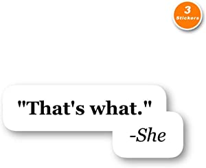 That's What She Said Sticker Funny Quotes Stickers - 3 Pack - Set of 2.5, 3 and 4 Inch Laptop Stickers - for Laptop, Phone, Water Bottle (3 Pack) S212250