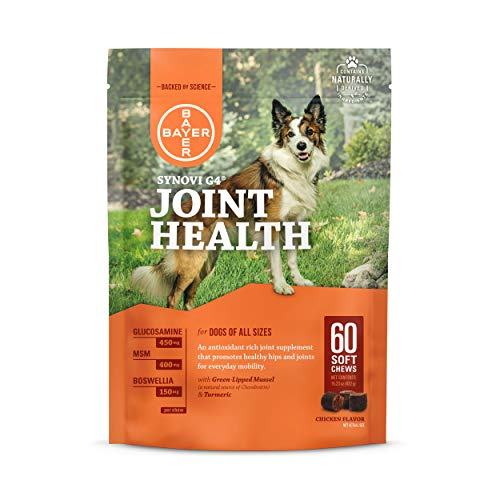 Bayer Synovi G4 Soft Chews Glucosamine Joint Supplement for Dogs, 60 count