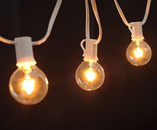 Brightown Clear Globe G40 Screw Base Light Bulbs 1 5 Inch