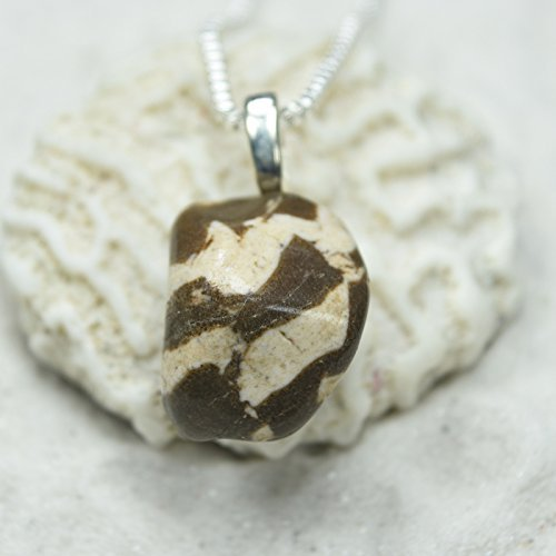 Custom Zebra Jasper Stone Pendant and Necklace - Choose Sterling Silver Chain or Leather Cord - Quantity of 1