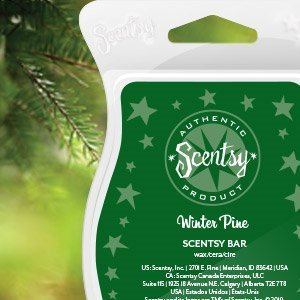 Scentsy Bar Winter Pine