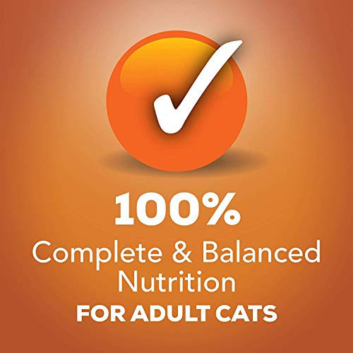 Purina Friskies Wet Cat Food Variety Pack 7