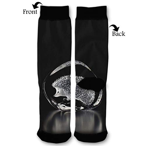 (High Ankle Socks,Art Glass Hedgehog Men Women All Season Sock,Soft Cotton Breathable Printed Rib Sox)