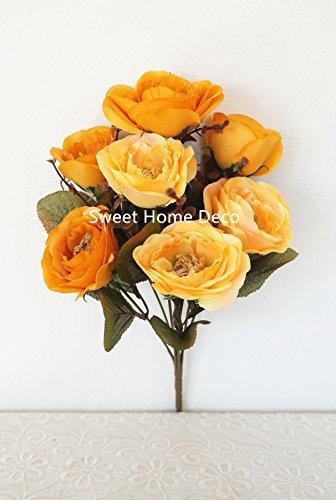 t rose bush - 7