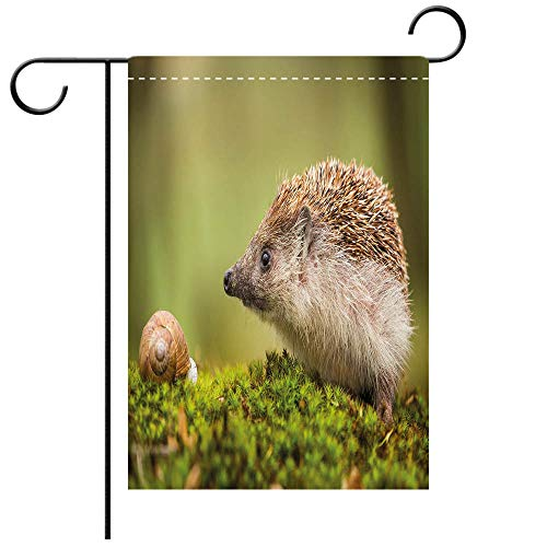 Artistically Designed Yard Flags, Double Sided Hedgehog Animal Photography in Eastern Europe Slug with Hedgehog Scenes from Nature Decorative Deck, patio, Porch, Balcony Backyard, Garden or Lawn (Photography In Illinois)