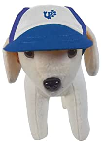 UP Collection Basic Blue Cap for Dogs, Medium