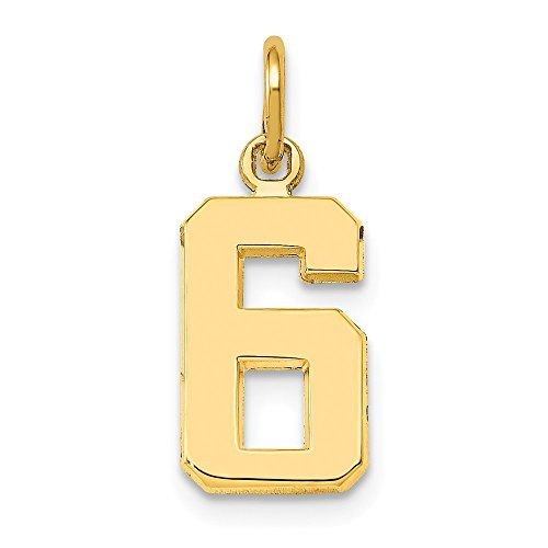Collection Jewelry Gold (JewelrySuperMart Collection 14k Yellow Gold Number Six Charm Pendant - # 6 - Yellow Gold - Small)